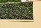 Anula Decorative fencing 30